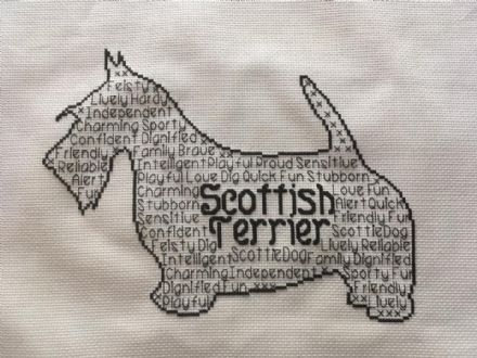 Scottish Terrier In Words